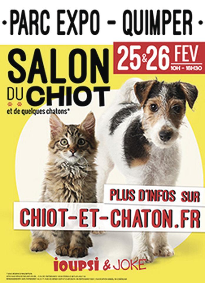 Ville de quimper ioupsi joke le salon de vente de for Salon chiot 2017